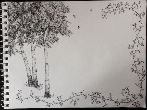 line drawing of birch trees and flower vines on a sketchpad