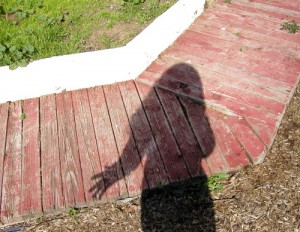 _shadow of a girl on the ground, tan bark below red plank walkway below green weeds_